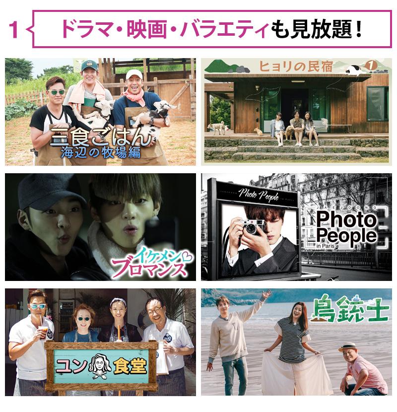1.映画・アニメ・海外ドラマも見放題!